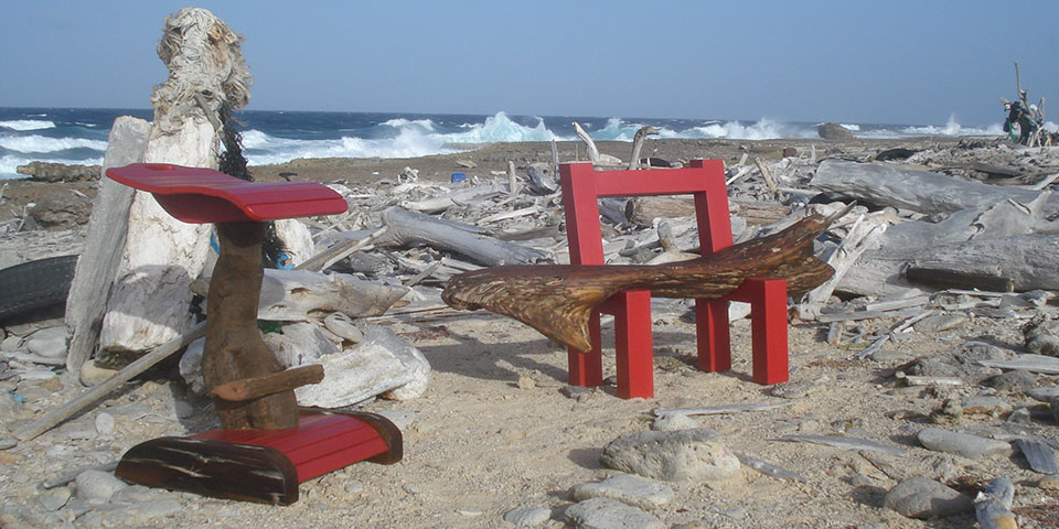 Bonaire Driftwood Collection